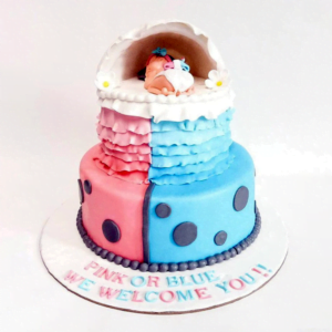 Pink or Blue Baby Shower Cake